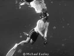 Snorkeler enjoying the amazing view of Jellyfish Lake, Pa... by Michael Easley 